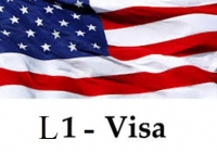 L Visa: How to File and Who Can Apply